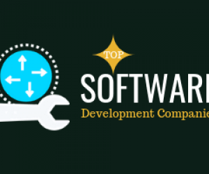 Top 10 Custom Software Development Companies & Developers in India & USA