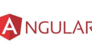 Top 10 AngularJS Development Companies | Hire Dedicated Angular 6 Developers in India & USA