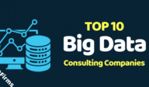 Top 10 Big Data Consulting Services Companies | Hire Big Data Analytics Developers in India & USA